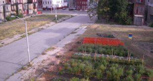 city-farm-1