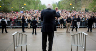 Bernie_for_Bloomington